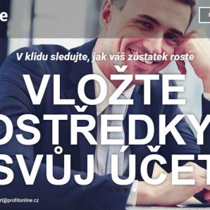 Webová stránka ProfitOnline cz