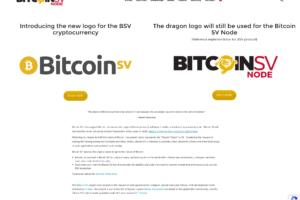 BSV - oficiální web